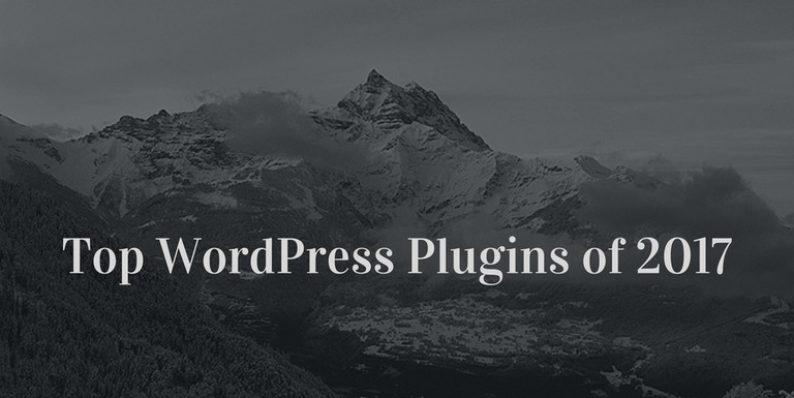 Top WordPress Plugins