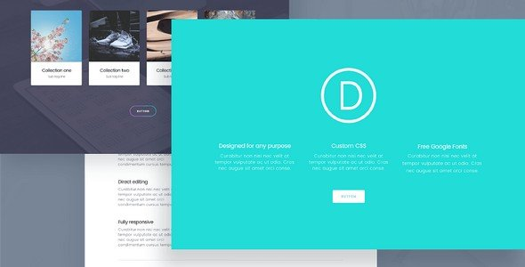 Divi is considered to be another top ranking ecommerce WordPress theme.