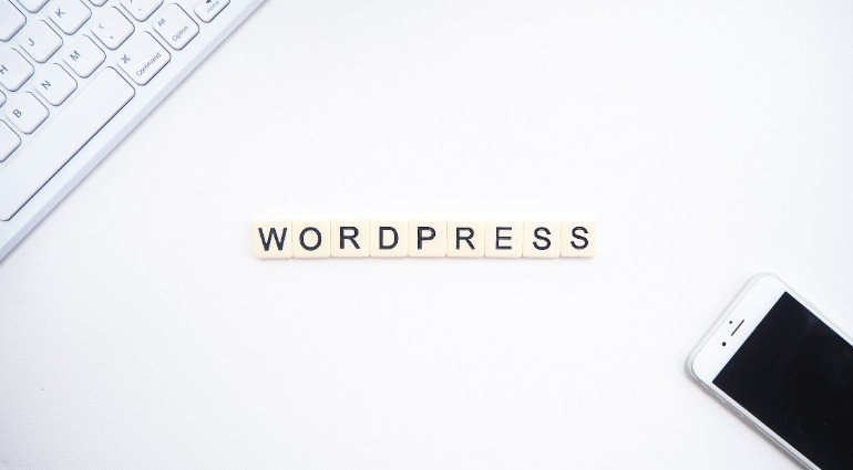 The Great Selection of 10 Brilliant Free and Premium WordPress Themes