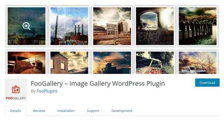 FooGallery is one of the best image gallery plugins for WordPress sites.