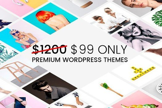 22 WordPress Themes - Mega Bundle.