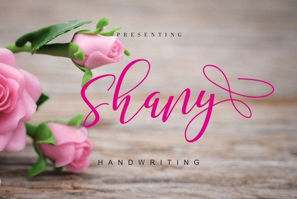 Shany is a modern and beautiful handwritten font.