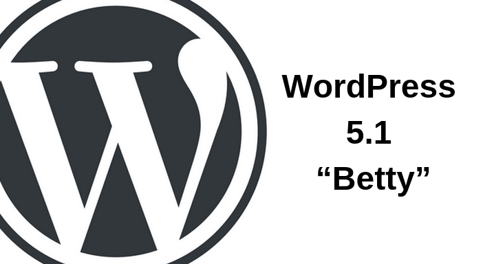 "WordPress 5.1 ""Betty"" Available With Editor Performance and Site Health"
