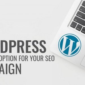 Why WordPress Is a Good Option for Your SEO Campaign