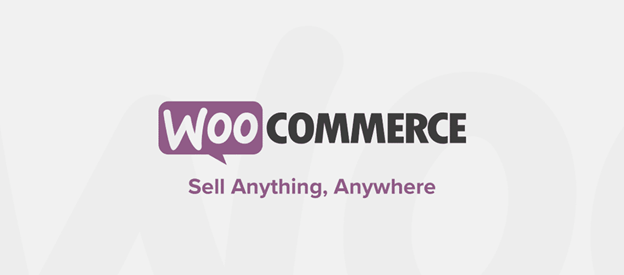 WooCommerce is a popular WordPress plugin used by eCommerce businesses.
