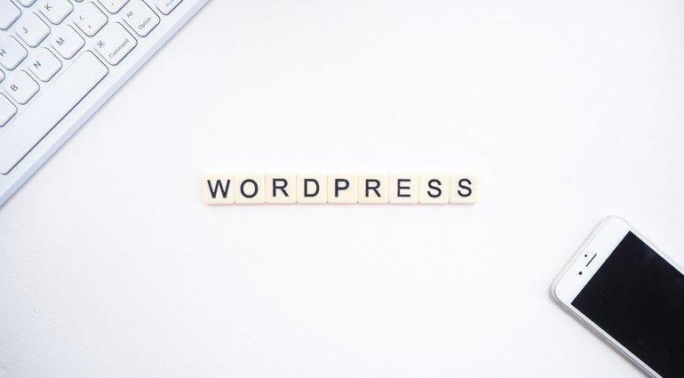 Interesting WordPress Website Statistics in 2021